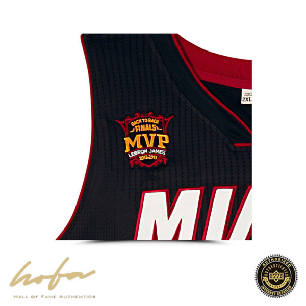 new arrival 7ceb5 188db LEBRON JAMES EMBROIDERED